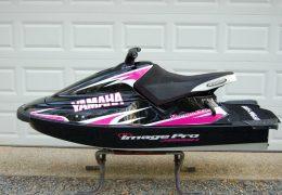 GK-12-WB installed on Katie McKenna's Yamaha WaveBlaster